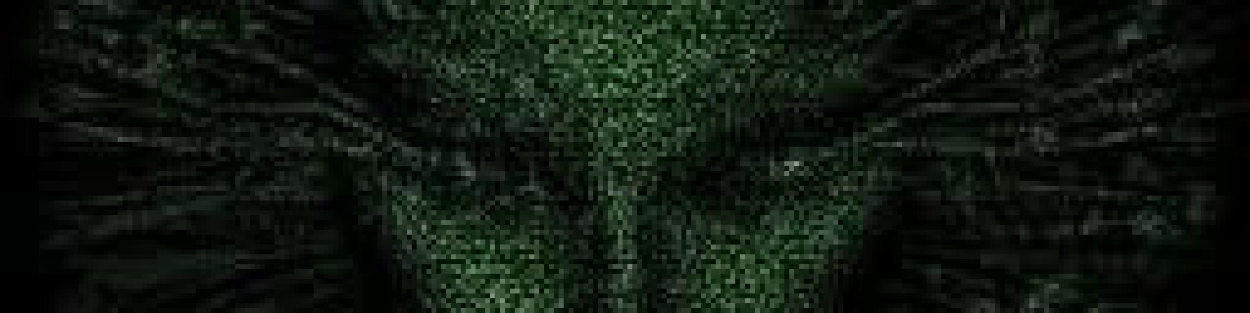 cropped-563113_10150753467498571_589588570_9719234_667891583_n4.jpg