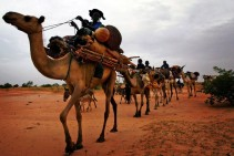 ethnic-tuareg