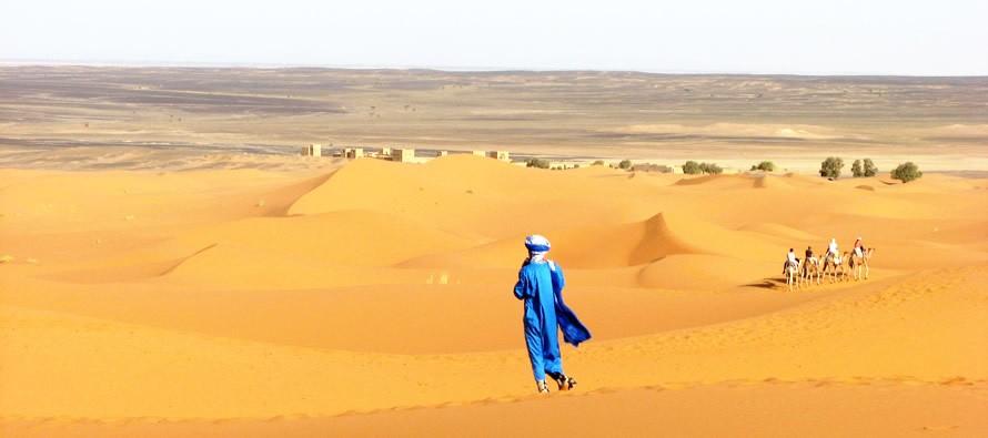 tuar-890x395_c