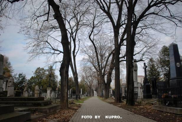 Kupro NS 4