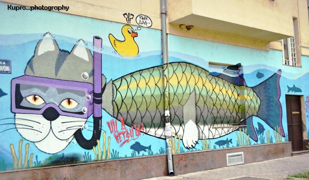 Grafiti 13