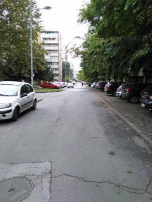 dragise-brasovana-2