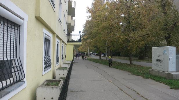 dusan-vasiljeva-6