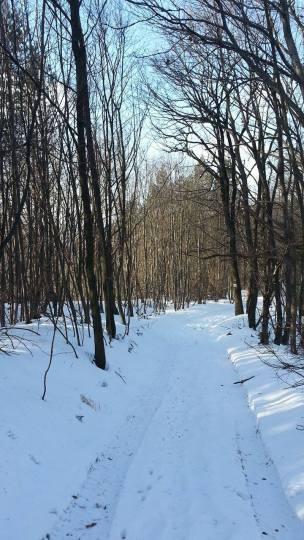 zimska-fruskac-setnja-2