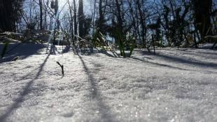 zimska-fruskac-setnja-20
