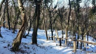 zimska-fruskac-setnja-21