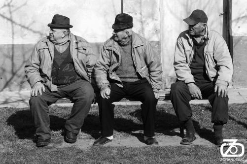 zoran-jesic-jesic-novi-sad-vojvodina-srbija-foto-photo-penzioneri