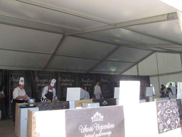 festival-gastronomije-novi-sad-2017-liman-park-dotkom (18)