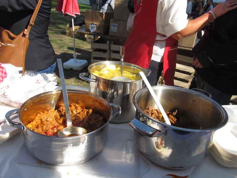 festival-gastronomije-novi-sad-2017-liman-park-dotkom (19)