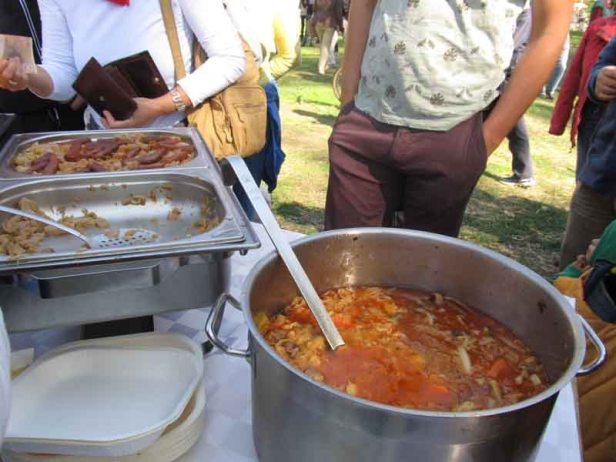 festival-gastronomije-novi-sad-2017-liman-park-dotkom (21)