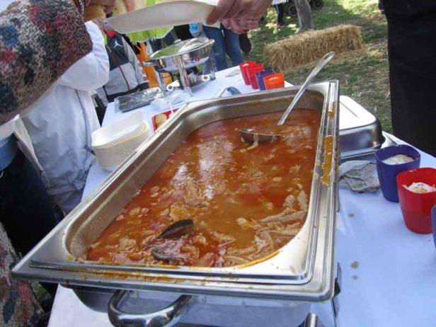 festival-gastronomije-novi-sad-2017-liman-park-dotkom (23)