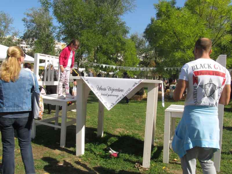 festival-gastronomije-novi-sad-2017-liman-park-dotkom (28)