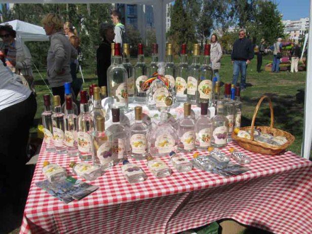 festival-gastronomije-novi-sad-2017-liman-park-dotkom (30)