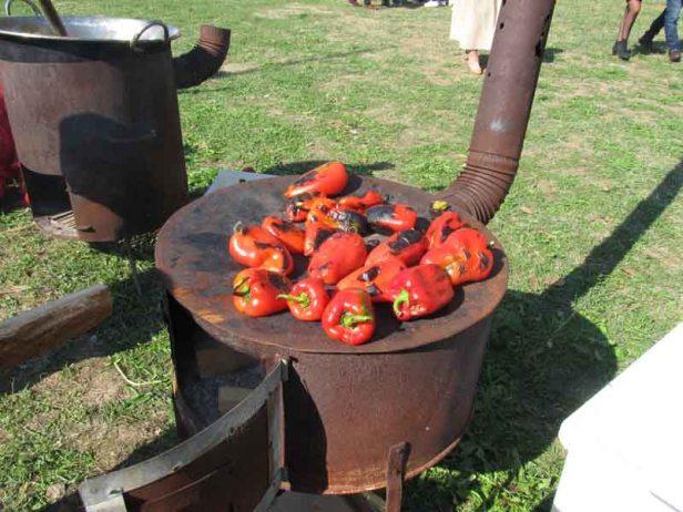 festival-gastronomije-novi-sad-2017-liman-park-dotkom (7)