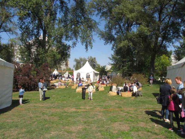 festival-gastronomije-novi-sad-2017-liman-park-dotkom (8)