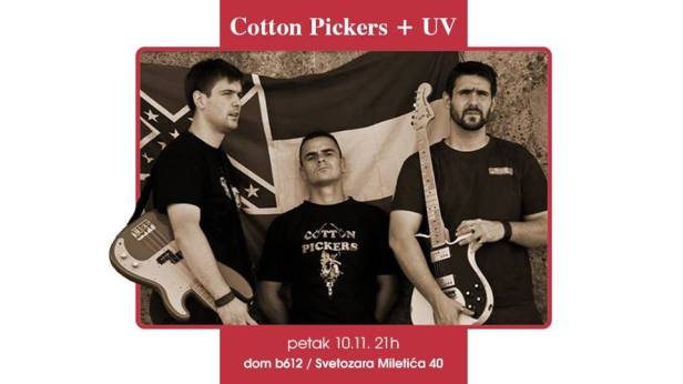 cotton-pickers-dom-b-612