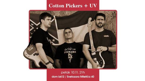 cotton-pickers-dom-b-612